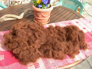 Washed suri fleece